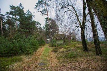Sellhorn_Totengrund (186)