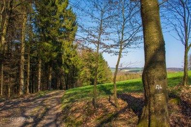 Suelzbahnsteig (32)