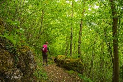 Gerolsteiner Felsenweg (152)