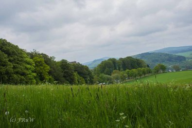Gerolsteiner Felsenweg (65)