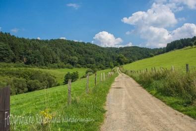 BergischerStreifzugBaumweg (88)