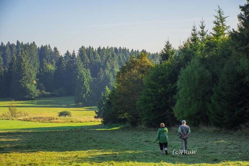 fuchskaute_erlebnisschleife_westerwald-7