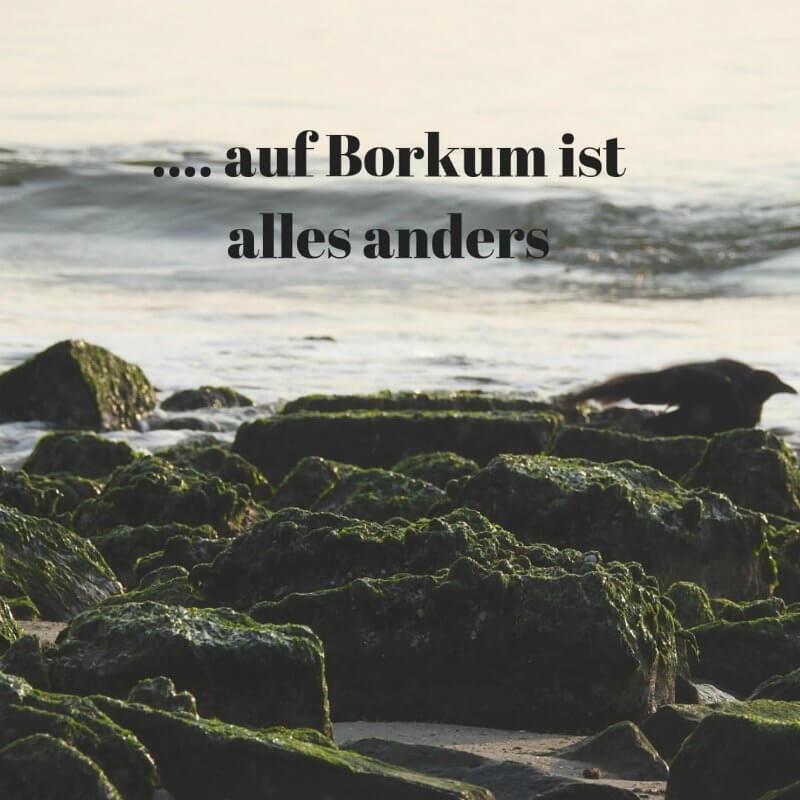 ElkeWorks-Borkum-Food-Lifestyleblog