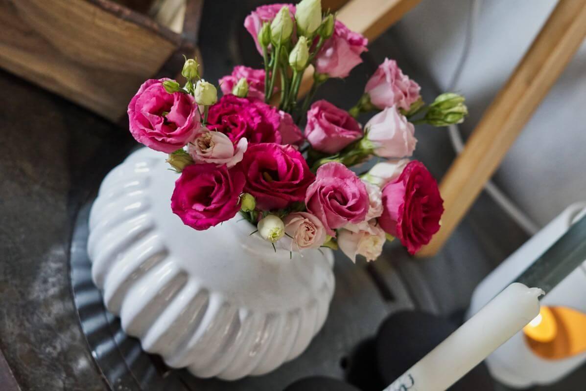 Friday-Flowerday-elkevoss.de-DSC04696