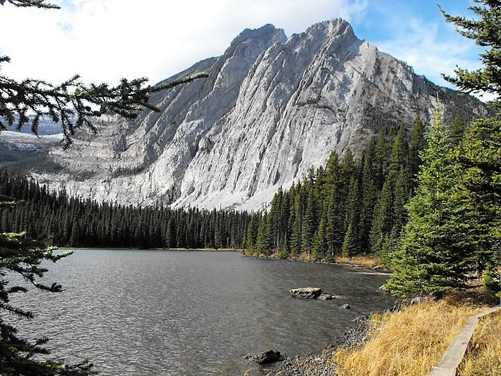 about elkford 5
