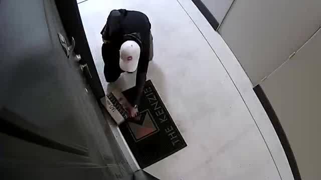 mckenzie-theft