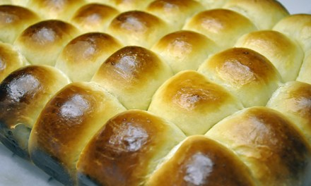 The Perfect Soft & Chewy Dinner Rolls
