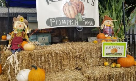 Bring The Kids To Keema's Pumpkin Farm!