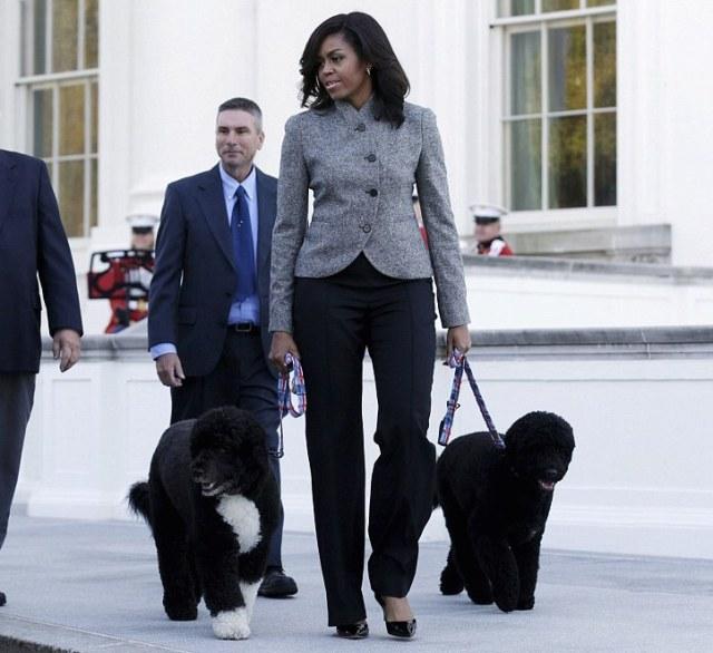 Image result for michelle obama fashion