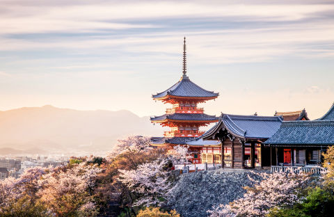 Zen and tranquil, Kyoto is a breathtaking escape with its recognizable architecture and ancient temples that peek out above the tree tops. Take a ride down the Okazaki Canal during springtime for swoon-worthy look at the abundant flowering cherry blossoms that line the water's edge.
