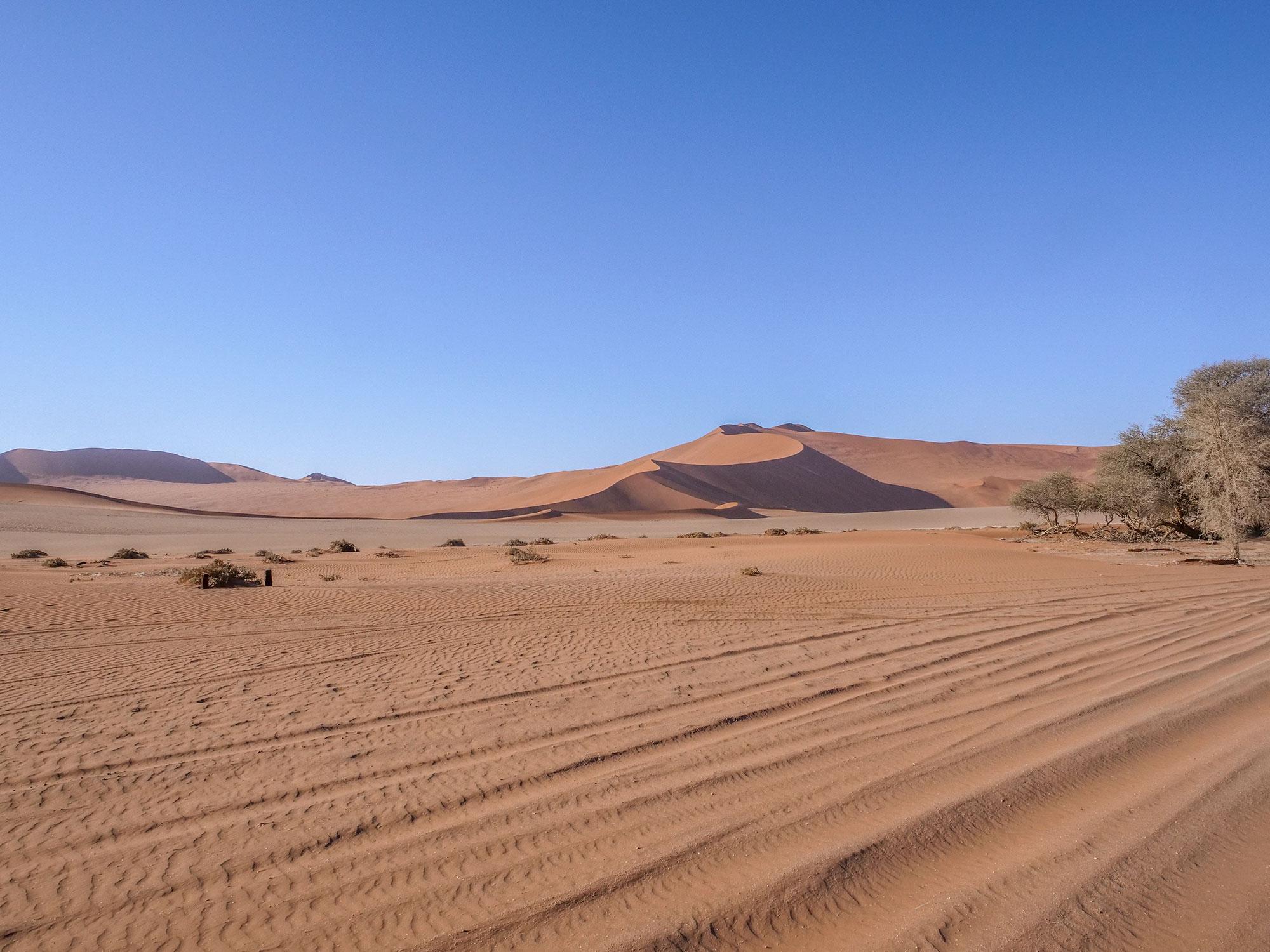 Sand dunes in Sossusvlei, Namib Desert in Namibia, Africa