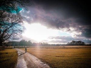 Ella in Tatton Park, UK