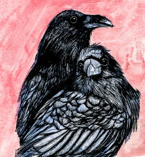 Ravens (c) Ella Johnston, private commission.