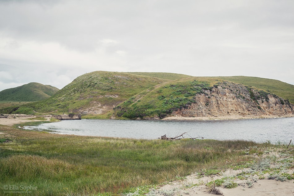 Point Reyes, Abbots lagoon trail overcast day. Moody landscape by Photographer Ella Sophie