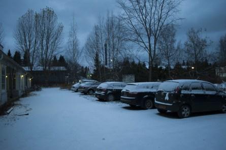 Snowy morning - Zasněžené ráno