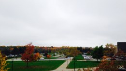 Fall is completely taking over UB and it's gorgeous... I loved the contrast between the sky and the colors of the trees on this day.