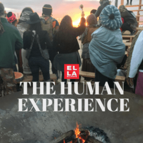 The Human Experience | Yoga Blogger