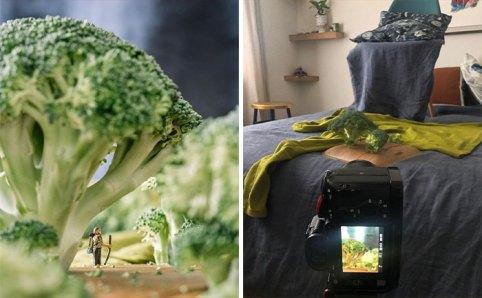 Paisajes fotografiados en casa entre brocolis