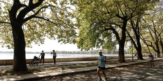 Γιατί το Ioannina Lake Run έγραψε ιστορία; Ως η «επανάσταση» του δρομικού κινήματος μπορεί να χαρακτηριστεί το Ioannina Lake Run 2020, καθώς κατάφερε να πραγματοποιηθεί σε μία περίοδο που η μία μετά τις άλλες δρομικές εκδηλώσεις αναβάλλονται για την επόμενη χρονιά.