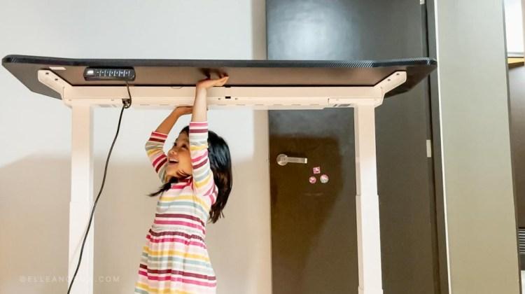 flexispot-gaming-standing-desk