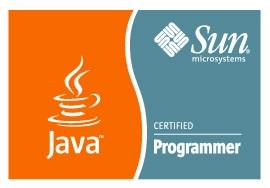 Sun Certified Programmer for Java 5 (SCJP)