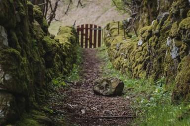 vermooster Weg in Schottland