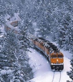 train on the snowy woods