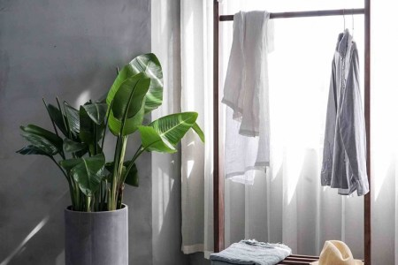 How to transform your bedroom into an understated urban jungle     How to transform your bedroom into an understated urban jungle
