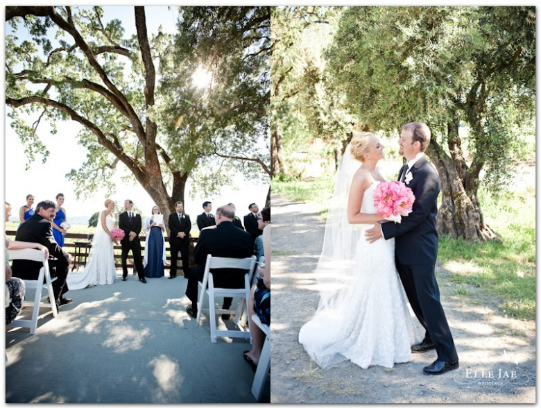 BR Cohn Winery Wedding