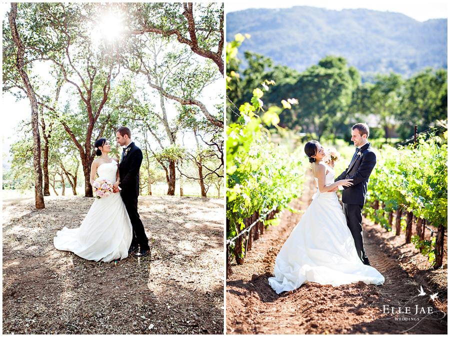 09_BR Cohn Winery Wedding