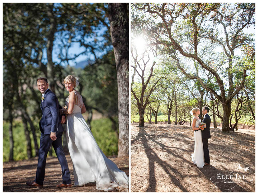 BR Cohn Sonoma Wedding Photographer 11