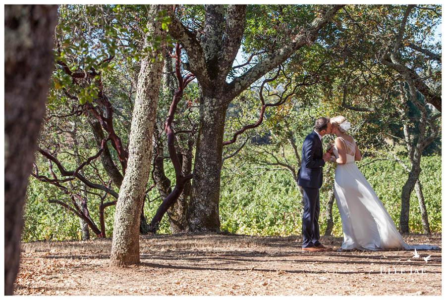 BR Cohn Sonoma Wedding Photographer 12