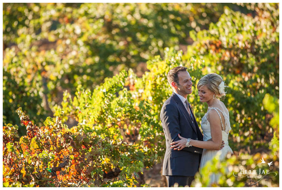 BR Cohn Sonoma Wedding Photographer 23