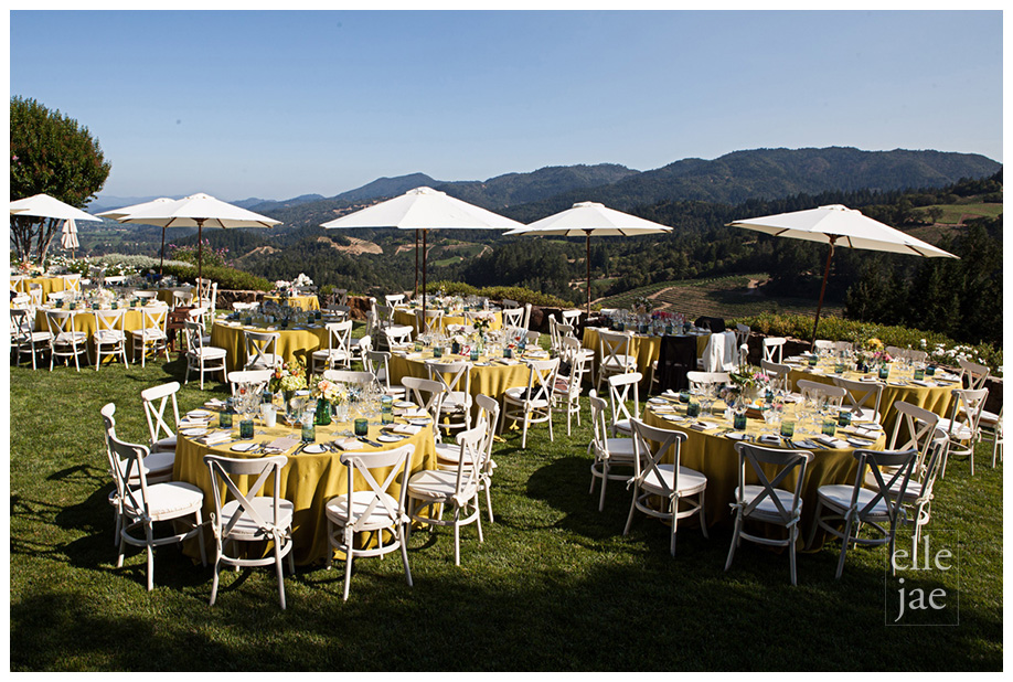 St Helena Private Estate Wedding