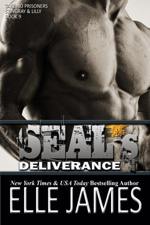 SEAL's Deliverance