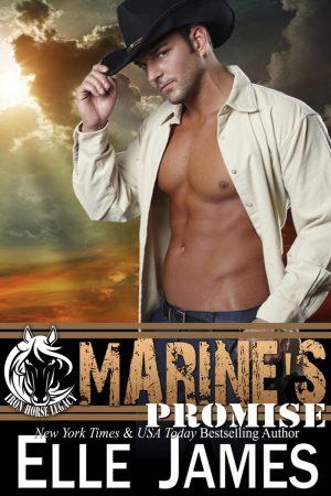 Marine's Promise