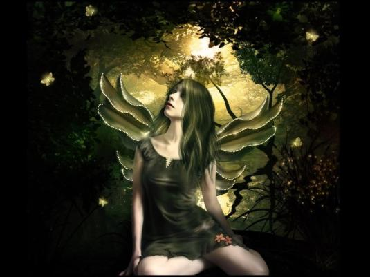 Shinning-Butterfly-Fairy-Wallpaper-fairies-10270474-1024-768