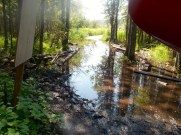 The puddle between the portage and the dock.