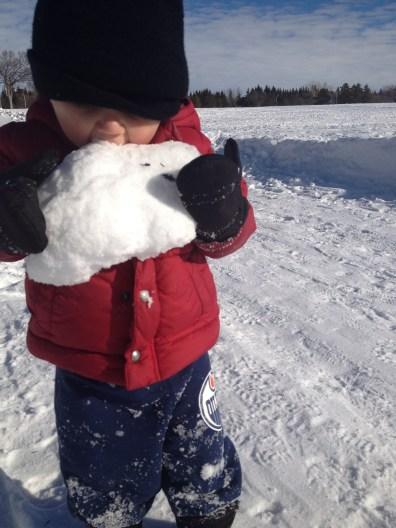 Snow tastes delicious!