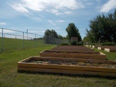 Community garden, raised beds, Cold Lake.