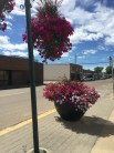 Downtown Westlock