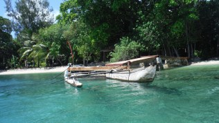 Typical vanuatu fishing canoes