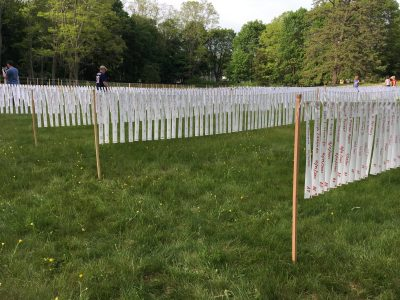 Remembering Our Fallen: Memorial Day Art Project