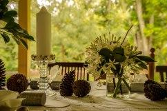 Agapanthus, camelia foliage, twigs and pine cones
