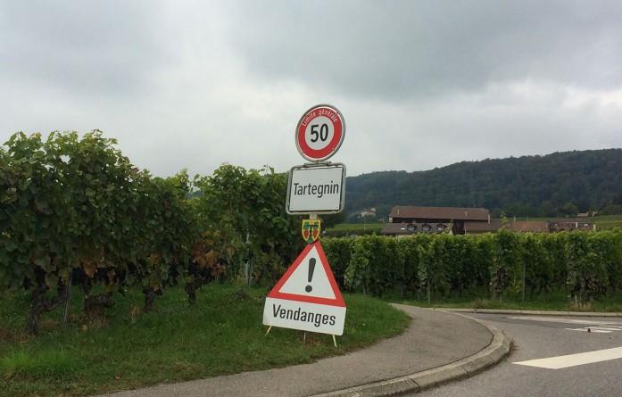 harvest signs road Tartegnin_300914