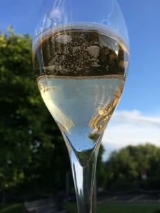 "Sparkling wine, ""Bartholie brut"" from Domaine de la Planta, Geneva"