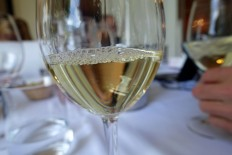 white wines, judging at the GPVS in Sierre in June 2015