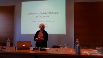 Swiss rare wines presentation in Locarno