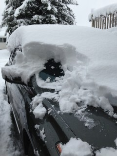 snow-digging-out