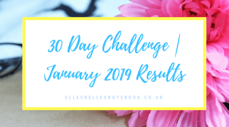 30 Day Challenge | January 2019 Results